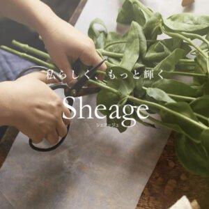【Sheage(シェアージュ)】ちょっとした時間で暮らしを上質に。無料ライフスタイルマガジン